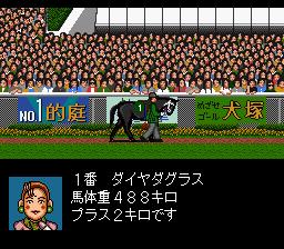 Derby Stallion II