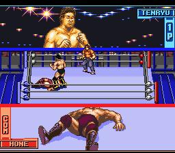 Tenryuu Genichiro no Pro Wrestling Revolution
